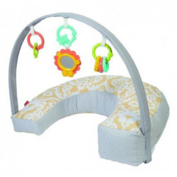 FISHER PRICE DGY01 ROGALIK...