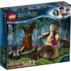 LEGO 75967 ZAKAZANY LAS...